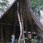 2. Osun-Osogbo is one of the last remaining Yoruba sacred forests. The photo above is the Ogboni house, the Ogboni being a fraternal secret society of the Yoruba-speaking peoples.