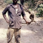 During a brief return visit to Nigeria in January 1982, I encountered this palm wine tapper in the 'bush' north of Ibadan. The woven hoop is used to climb the palm trunk.