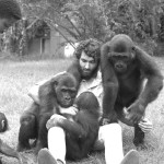 Michael Iyoha, the senior keeper in charge of the apes, helps keep order. Michael was an exceptionally gifted zoo keeper who was much involved with the care of the gorillas. 1967.