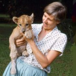 June Hopkins, the wife of a member of staff of the University, kindly kept the cub at home and raised it over the first few months prior to it coming to the Zoo. The cub was named Moshi after a river near Kishi.