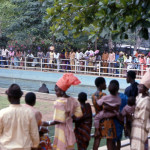 The ape exhibit continued to be a popular attraction, especially the 'swimming' gorillas, and attracted visitors to the Zoological Garden from all over Nigeria. By 1979 the Zoo was receiving nearly a quarter of a million paying visitors each year, more than any other public attraction of any kind in Nigeria. April 1973.