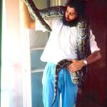 Burmese python (Python molurus bivittatus). March 1966.